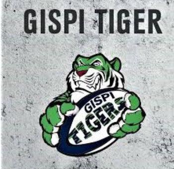 logo tigers.jfif