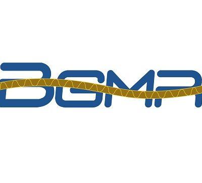BGMR logo