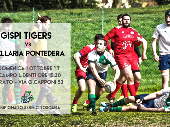 I Tigers pronti all'esordio